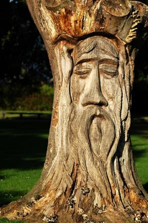 A carved tree